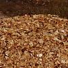 Holzabfälle